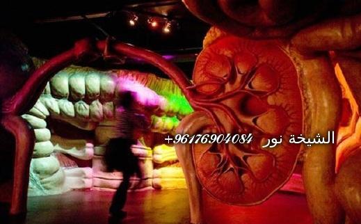صورة القرين ومنع الحمل-شيخة نور الصادقة 0096176904084