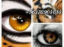 صورة حجر عين النمر وفوائده العجيبة الشيخة نور الصادقة 0096176904084