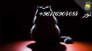 صورة ارسال شديد القط الاسود سفلي-أقوى شيخة روحانية نور 0096176904084