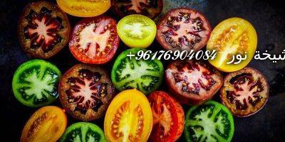 صورة تفسير حلم الطماطم-اقوى شيخة روحانية نور 0096176904084