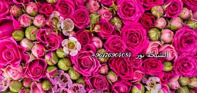 صورة تفسير الورد في المنام-افضل شيخة روحانية نور 0096176904084