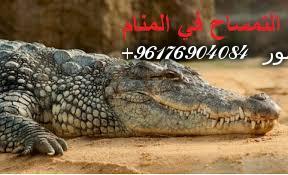 صورة تفسير رؤيه التمساح في المنام|اصدق شيخة روحانية نور 0096176904084